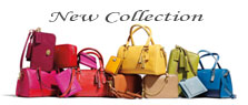 Latest handbags Collection: Weekly updates