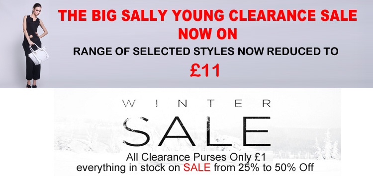SALE Purses Only £1! SALE Sally Young Handbags Only £11